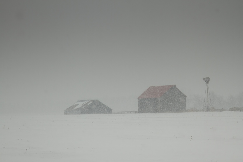 Barn in Winter Storm-1814
