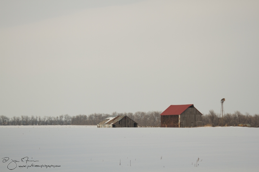 F13 005 Barn in Snowy Field-1836