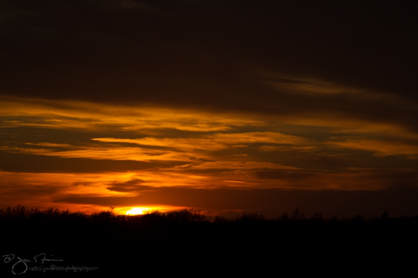 March Sunset-5561
