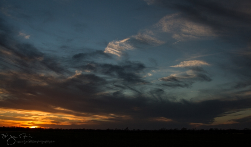 March Sunset-5564