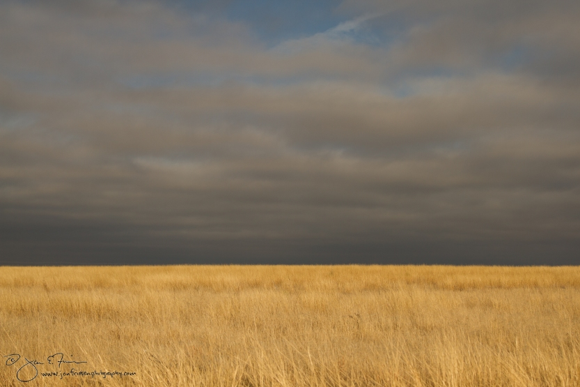 Western Morning Sky - Oklahoma Panhandle-5568
