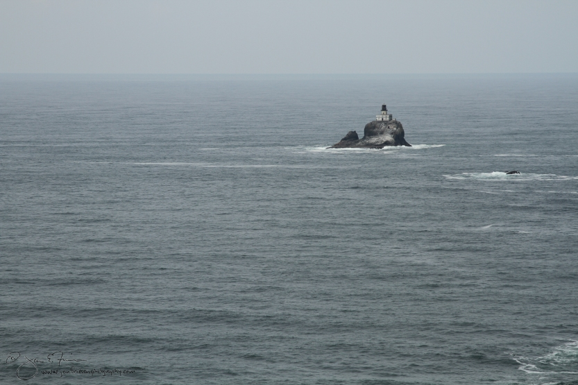 Cannon Beach Lighthouse-5957
